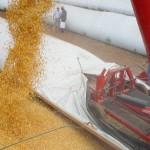 Produtores usam silo-bolsa para contornar déficit de armazenagem