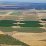 Agricultura de precisão no manejo da fertilidade do solo