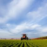 Resistência de fungicidas a ferrugem da soja