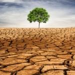 Soluções inteligentes para driblar a escassez de água