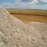 Consultores sugerem aumento da dose de calcário