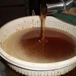 Flora apícola é determinante para o tipo e a qualidade do mel