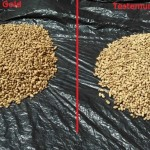 Importância do cobalto e molibdênio na cultura do amendoim