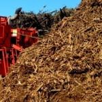 MS ganha destaque na geração de  energia a partir da queima da madeira