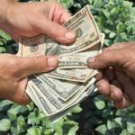 O dólar e a agricultura – O duelo continua