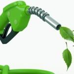 Média da safra está 10% maior para os dois etanóis