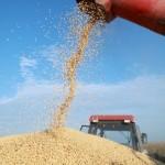 Commodities alcançam preços recordes