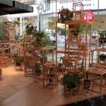 Porque a indústria brasileira quer e precisa da madeira de espécies alternativas