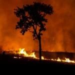 Brasil registra 65% a mais de queimadas em 2016
