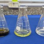 Extratos vegetais e óleos essenciais no controle de nematoides