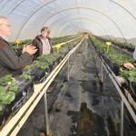 Parceria forte –AgroCultivo e Vivaz Consultoria