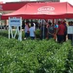 IHARA apresenta soluções durante a Abertura Oficial da Colheita do Arroz
