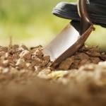 Essencialidade da análise do solo