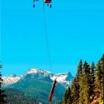 Colheita com cabo aéreo ganha espaço
