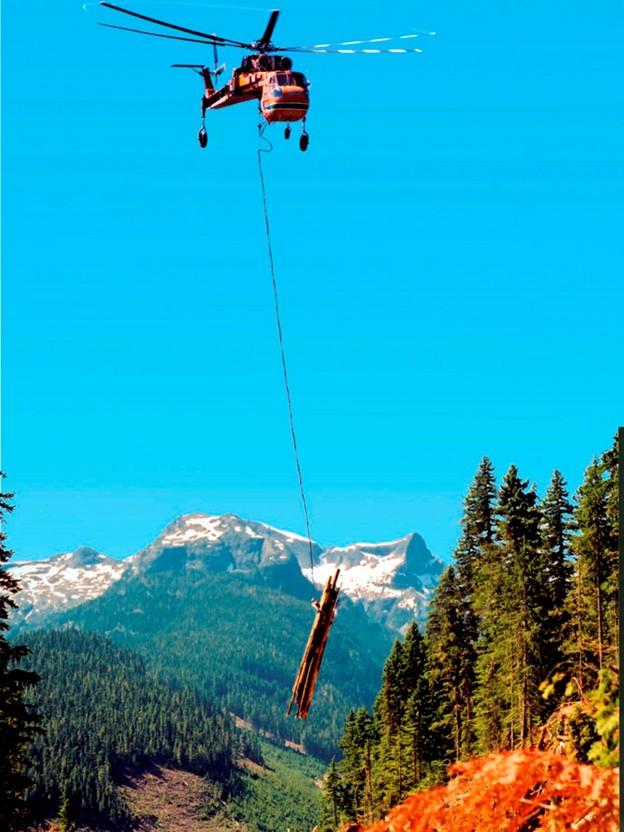 European Air-Crane Logging