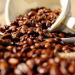 Concurso de Qualidade dos Cafés de Minas Gerais anuncia ganhadores da 14ª edição