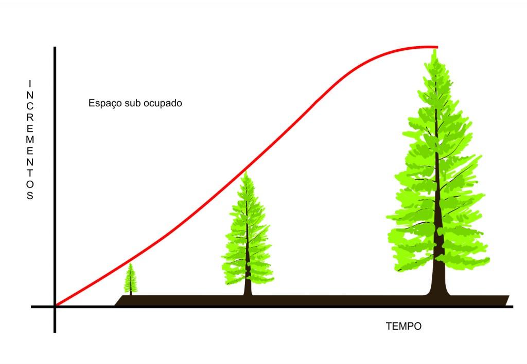 Análise da proposição do manejo florestal