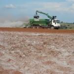 A essencialidade do gesso agrícola na correção do solo