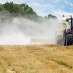 Rochagem é boa opção para melhorar a fertilidade do solo
