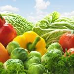 Controle de pragas e doenças no sistema orgânico