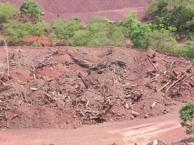 Montes de topsoil e galharia em área de restauração  - Créditos Reinaldo Langa
