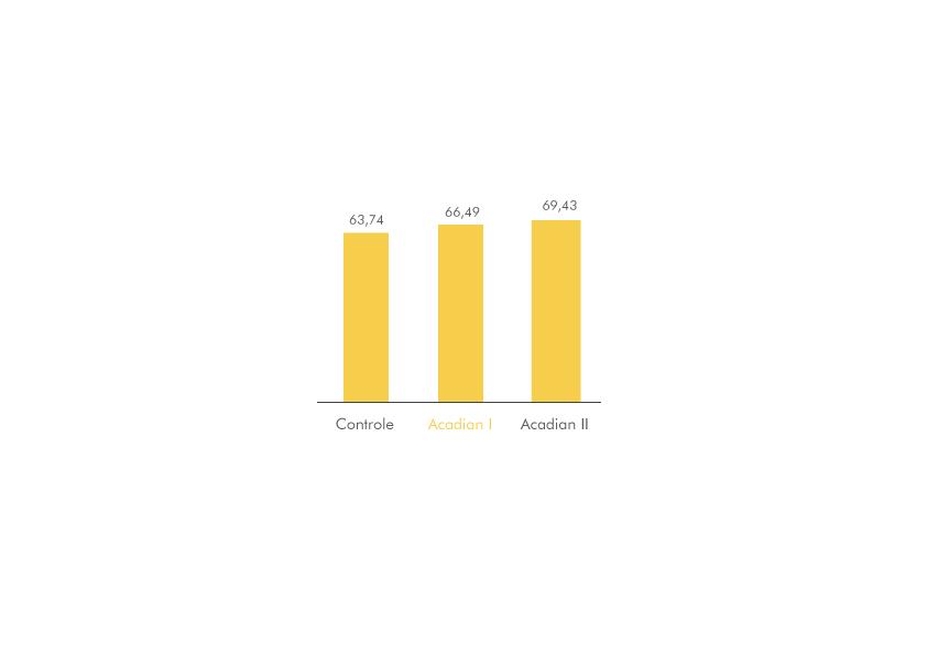 grafico4 Produtividade em scha