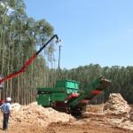 Proteção e segurança –Relação entre EPI's e trabalhadores da operação florestal