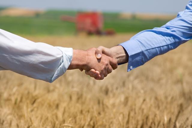 A gestão envolve desde saber comprar os insumos atéfazer uma boa parceria para adquiri-los de maneira adequada a um custo apropriado - Créditos Shutterstock