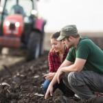 Como a análise de solo pode ajudar seu cultivo