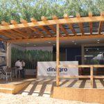 Dinagro – O braço forte da silvicultura
