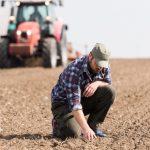 Análise de solo –Conhecendo a base da produtividade