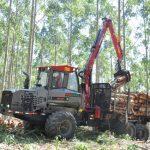 PENZSAUR destaca FORWARDER, para o corte seletivo de madeira