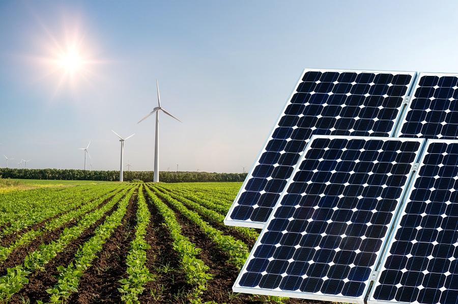 A energia solar é uma tecnologia já presente em diversas propriedades agrícolas - Crédito Shutterstock