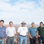 Bayer –Especialista em agricultura