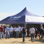 BASF acompanha crescimento da cotonicultura mineira