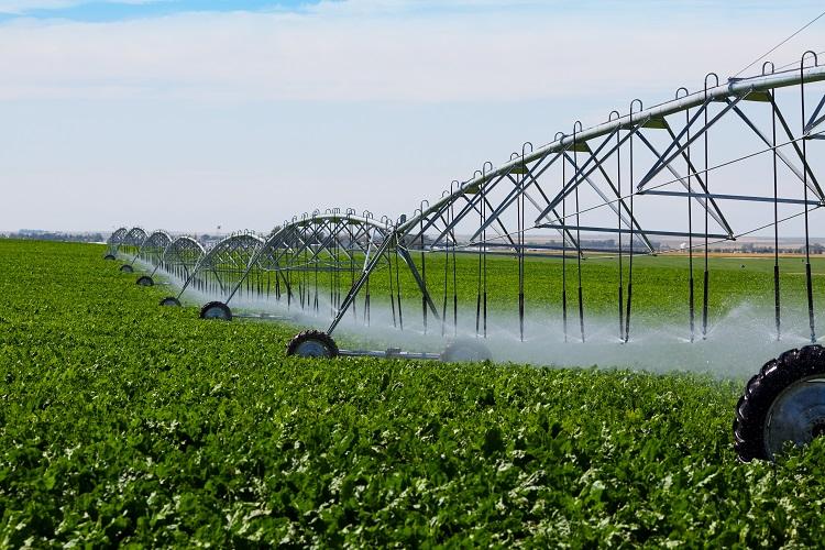 A energia solar pode ser aproveitada para mover os sistemas de irrigação, por exemplo - Crédito Shutterstock